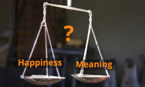 happiness-meaning1