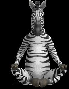 idealul sau în căutarea zebrei cu pătrătele